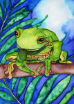 Blue Moon Tree Frog