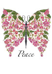 Begonia Peace Butterfly
